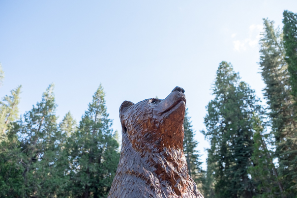 The U.C. Berkeley bear stood watch over the festivities.