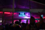 SnowGlobe Music Festival, SnowGlobe, crowd, crowd shot