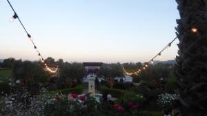 Napa Valley Wine Train, Rock the Rails, V. Sattui Winery