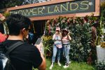 Flower Lands