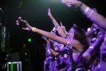 Troye Sivan fans, Troye Sivan, fans