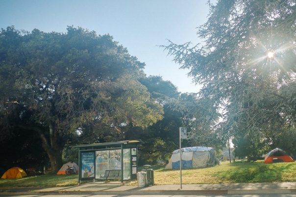 Mosswood Park, Burger Boogaloo